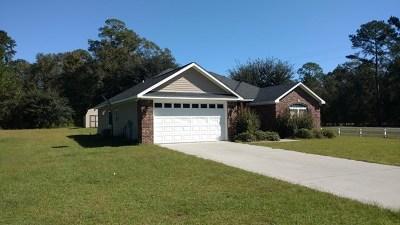 Ludowici Single Family Home For Sale: 22 Woolard Way SE