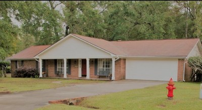 Hinesville Single Family Home For Sale: 407 Willow Oak Drive