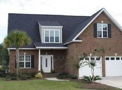 Ludowici Single Family Home For Sale: 221 Virginia Lane NE