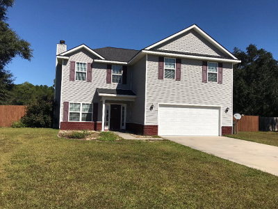 Ludowici Single Family Home For Sale: 402 Mustang Lane NE