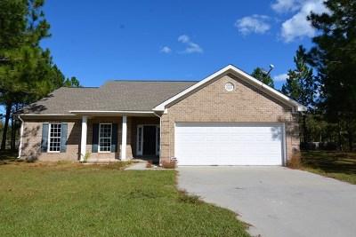 Ludowici Single Family Home For Sale: 280 Kalynne Way NE