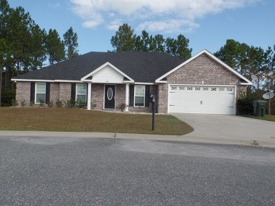 Ludowici Single Family Home For Sale: 102 Shelby Rae Court NE