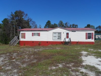 Jesup Single Family Home For Sale: 2517 Constance Road