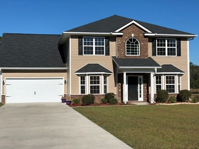 Ludowici Single Family Home For Sale: 608 Mustang Lane NE