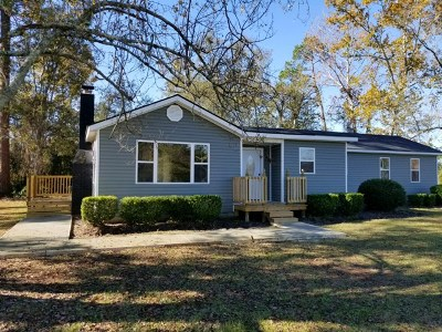Ludowici Single Family Home For Sale: 59 Hendrix Street NE