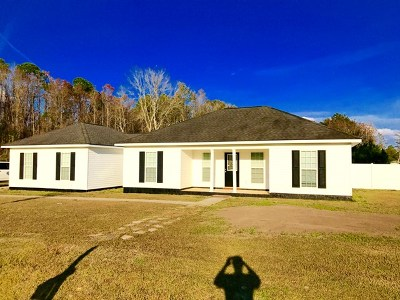 LUDOWICI Single Family Home For Sale: 590 Wilkerson Drive NE
