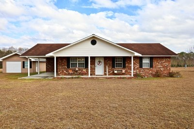 Glennville, Glenville Single Family Home For Sale: 256 Daisy Circle
