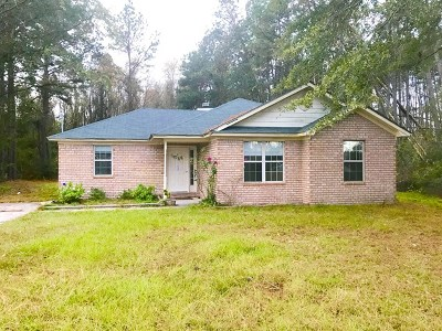 Ludowici Single Family Home For Sale: 361 Wilkerson Drive NE