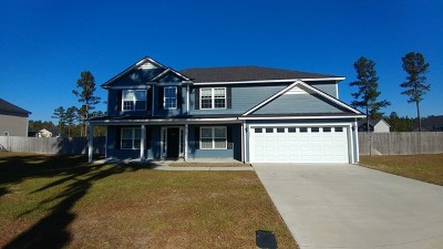 Ludowici Single Family Home For Sale: 225 Coleman Pass NE