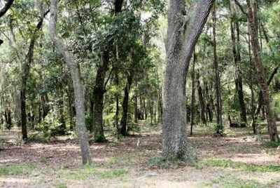 Residential Lots & Land For Sale: Lot 1 Spartina Way