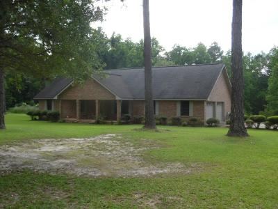 Jesup Single Family Home For Sale: 319 Timberlakes Trail