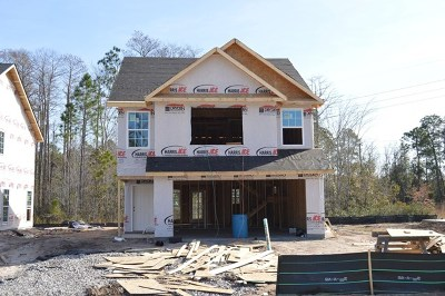 HINESVILLE Single Family Home For Sale: 1203 Cypress Fall Circle