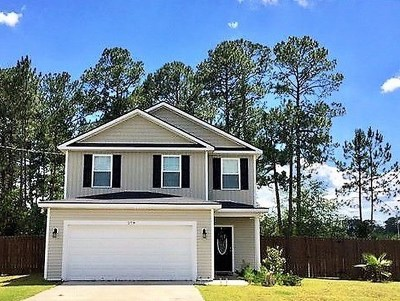 LUDOWICI Single Family Home For Sale: 279 Hendrix Street NE
