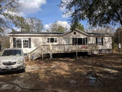 Glennville Single Family Home For Sale: 175 Oakwood Circle NE