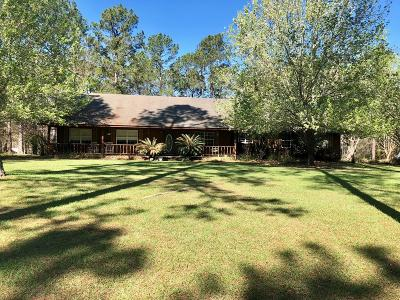 Jesup Single Family Home For Sale: 381 Timberlakes Trail