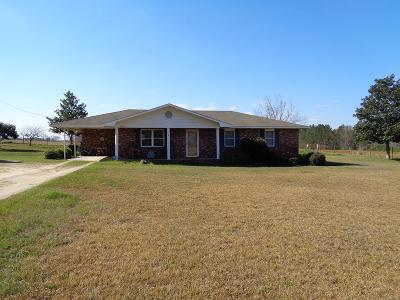 Glennville Single Family Home For Sale: 2687 Hugh Driggers Road