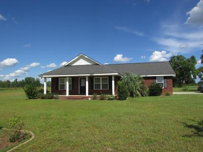 Glennville Single Family Home For Sale: 2086 Ebenezer Church Road