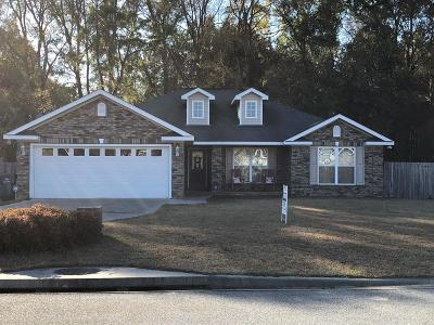 Ludowici Single Family Home For Sale: 22 Conner Drive NE