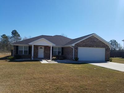 LUDOWICI Single Family Home For Sale: 59 Black Gum Drive NE