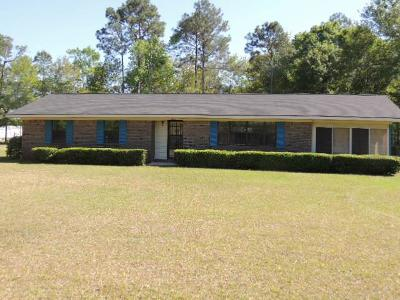 Ludowici Single Family Home For Sale: 4878 Rye Patch Road