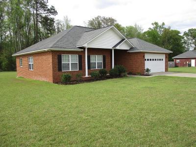 Ludowici Single Family Home For Sale: 31 Water Oak Lane NE