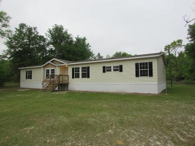 Jesup Single Family Home For Sale: 1006 River Ridge Circle