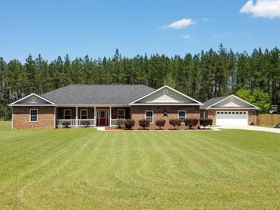 Ludowici Single Family Home For Sale: 51 Vickers Pass SE