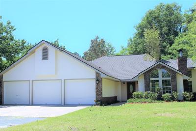 Hinesville Single Family Home For Sale: 4876 Highway 196 West
