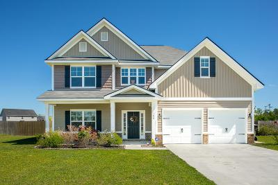 Ludowici Single Family Home For Sale: 189 Highland Pony Way NE