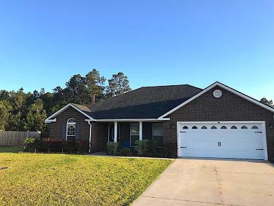 Ludowici Single Family Home For Sale: 101 Madison Drive