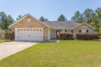 Ludowici Single Family Home For Sale: 209 Woolard Way NE