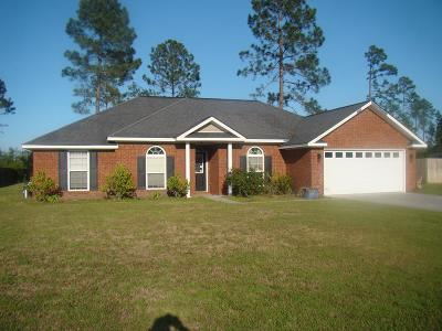LUDOWICI Single Family Home For Sale: 428 Burnt Pines Road NE