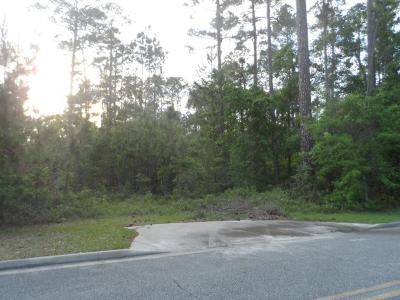 jesup Residential Lots & Land For Sale: 86c-135 Tift Street