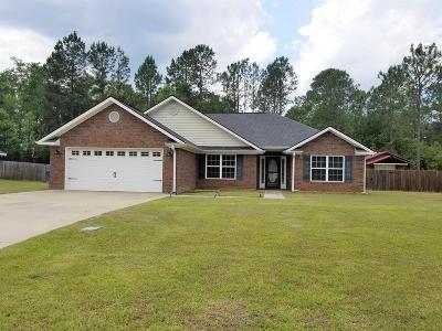 LUDOWICI Single Family Home For Sale: 306 Carson Street NE