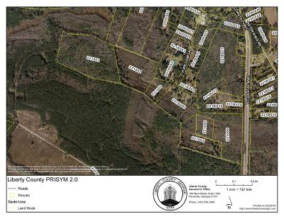 Residential Lots & Land For Sale: Coastal Highway