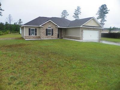 LUDOWICI Single Family Home For Sale: 82 Norton Street NE