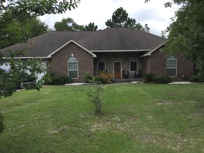 Jesup Single Family Home For Sale: 515 Cody Drive