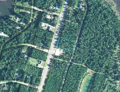 Residential Lots & Land For Sale: Barnstorm Road