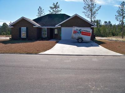 Ludowici Single Family Home For Sale: 200 Mill Pond Lane SE