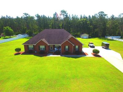 Jesup Single Family Home For Sale: 109 Vixenhill Drive