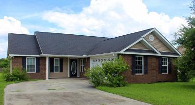 Ludowici Single Family Home For Sale: 113 Mancey Garrason Loop NE