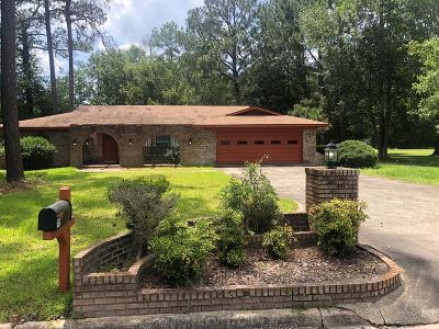 Jesup Single Family Home For Sale: 115 Pierce Street