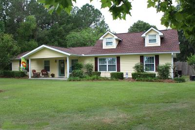 Glennville Single Family Home For Sale: 1231 Highway 301 South