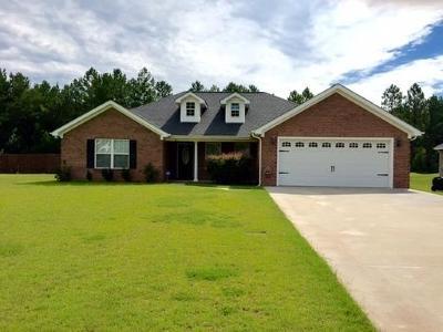 Ludowici Single Family Home For Sale: 365 Carson Street NE