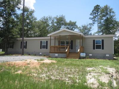 Jesup Single Family Home For Sale: 225 Turpentine Circle