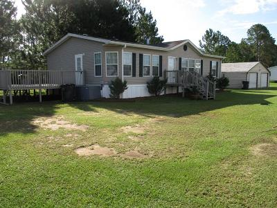 LUDOWICI Single Family Home For Sale: 156 Mary Court