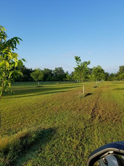 Residential Lots & Land For Sale: Jones Creek Loop