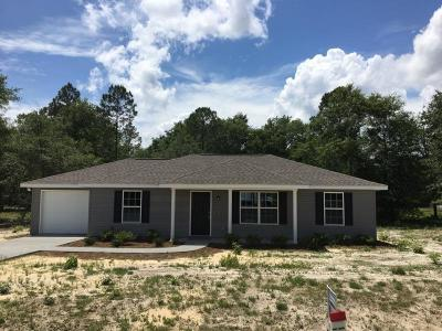 Jesup Single Family Home For Sale: 355 Turpentine Circle