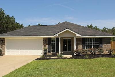 Ludowici Single Family Home For Sale: 98 Pine View Drive SE