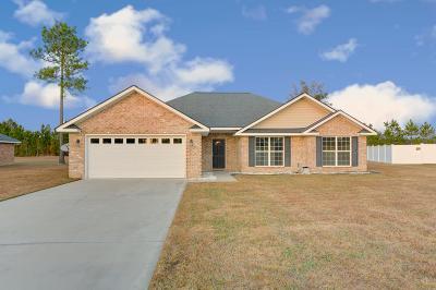 Ludowici Single Family Home For Sale: 506 Burnt Pines Road NE
